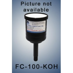 Charcoal cartridge filter (exhaust filter)  100 gramms loaded with KOH for acid vapors (validity: 6 months)
